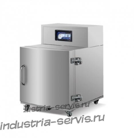 Вертикальная однокамерная вакуум-упаковочная машина DZ-600LD